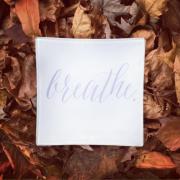 EJ Breathe 2015-11-19